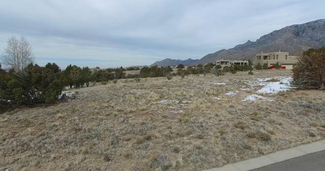 13705 Quaking Aspen Place NE, Albuquerque, NM 87111 (MLS #984705) :: Campbell & Campbell Real Estate Services