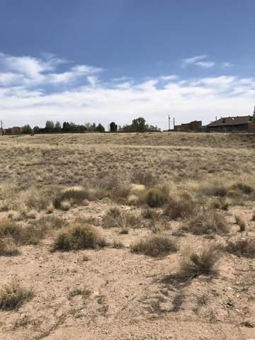 Palomas Avenue NE, Albuquerque, NM 87122 (MLS #984726) :: The Buchman Group
