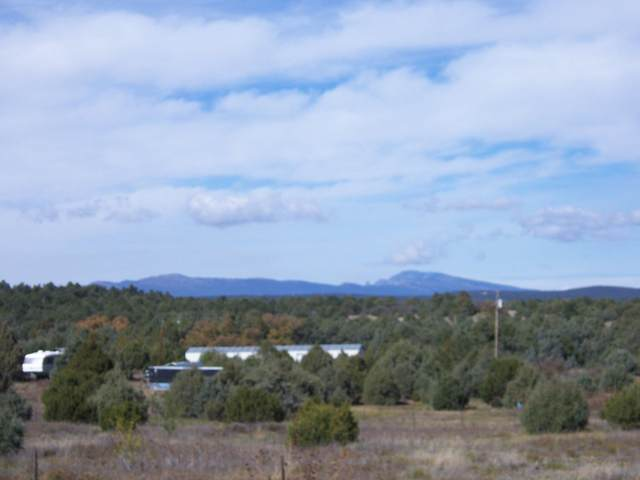 20 Lakes Place, Tijeras, NM 87059 (MLS #984798) :: The Buchman Group