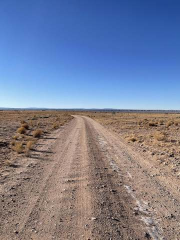 Pedro Place, Veguita, NM 87062 (MLS #984904) :: The Buchman Group