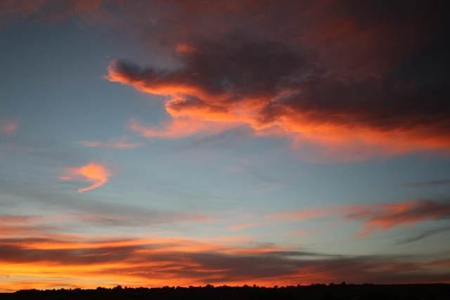 62 Calle Blanca, Corrales, NM 87048 (MLS #984917) :: Berkshire Hathaway HomeServices Santa Fe Real Estate
