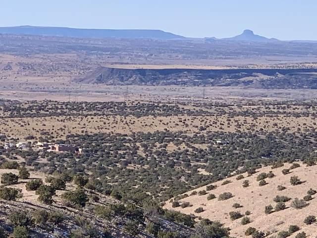 Camino Zia Road, Placitas, NM 87043 (MLS #984964) :: Keller Williams Realty