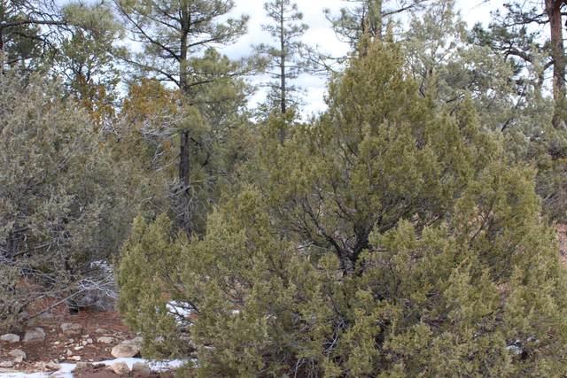 5 Camp Fire Trail, Edgewood, NM 87015 (MLS #985039) :: The Buchman Group