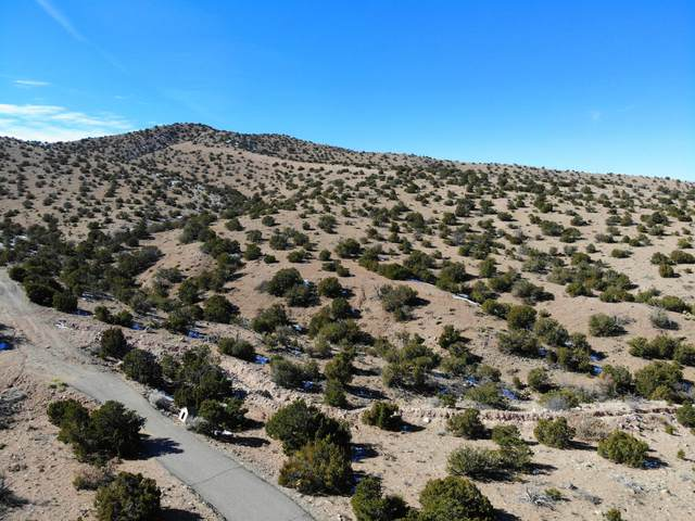 HWY 165 & Camino Tecolote Road, Placitas, NM 87043 (MLS #985055) :: The Buchman Group