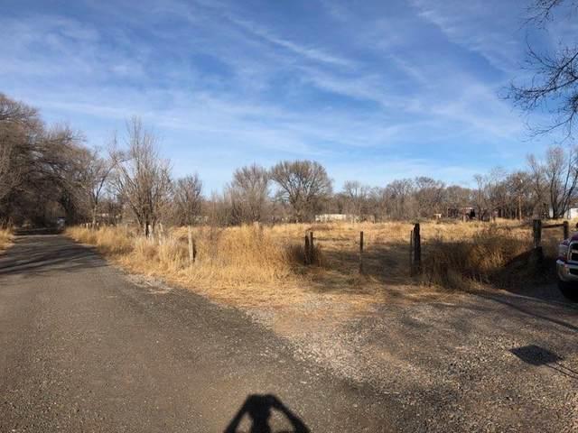 VL Servis Farm Road, Los Lunas, NM 87031 (MLS #985073) :: The Buchman Group