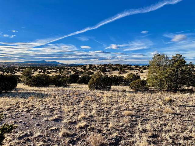 47 Pinon Springs Road, Magdalena, NM 87825 (MLS #985146) :: Campbell & Campbell Real Estate Services