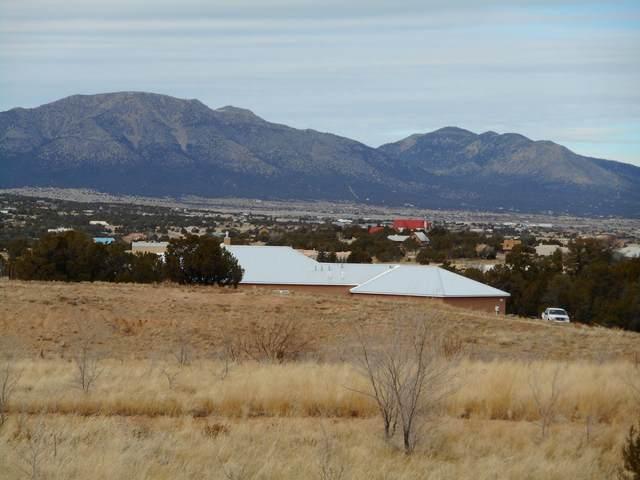 173 Cowboy Way, Edgewood, NM 87015 (MLS #985195) :: Keller Williams Realty