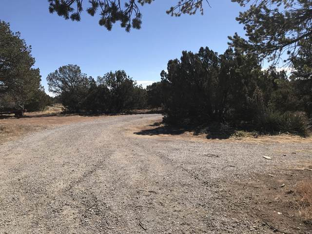 171 Cedar Lane Drive, Moriarty, NM 87035 (MLS #985269) :: Keller Williams Realty