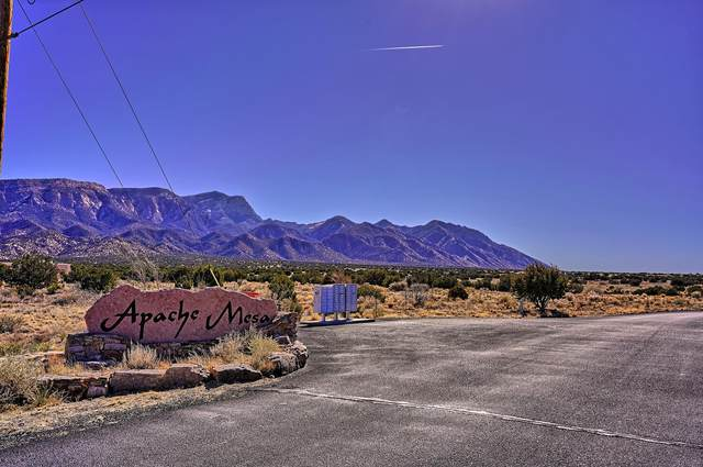 Lot 32 Apache Mesa Road, Placitas, NM 87043 (MLS #985299) :: Campbell & Campbell Real Estate Services