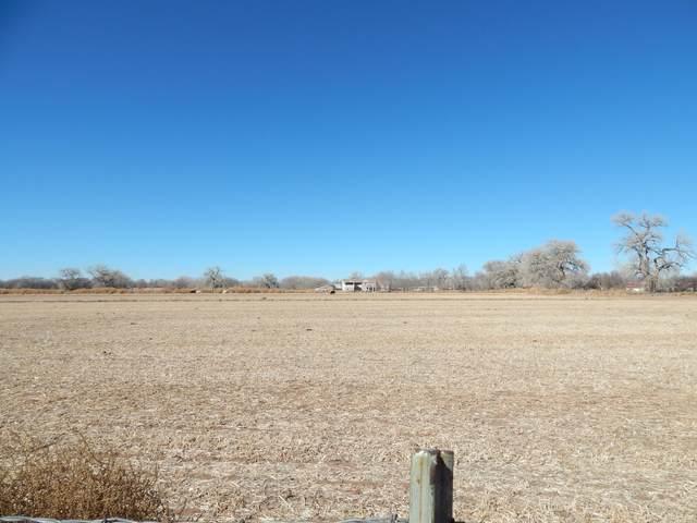 14 Whitehouse Road, Los Lunas, NM 87031 (MLS #985381) :: Keller Williams Realty