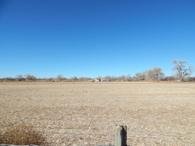 14 Whitehouse Road, Los Lunas, NM 87031 (MLS #985381) :: The Buchman Group