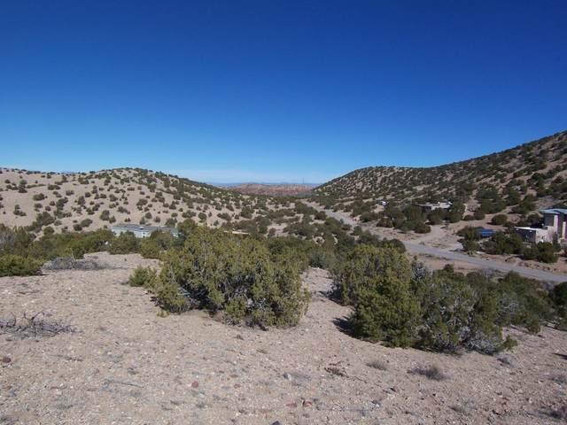 6 Caballo Palido, Placitas, NM 87043 (MLS #985424) :: The Buchman Group