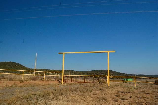 Hwy 112, Los Ojos, NM 87575 (MLS #985617) :: Keller Williams Realty