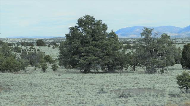 lot 9 Thomas IV Road, Datil, NM 87821 (MLS #985626) :: Keller Williams Realty