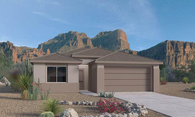 2522 Mccauley Loop NE, Rio Rancho, NM 87144 (MLS #985633) :: Keller Williams Realty