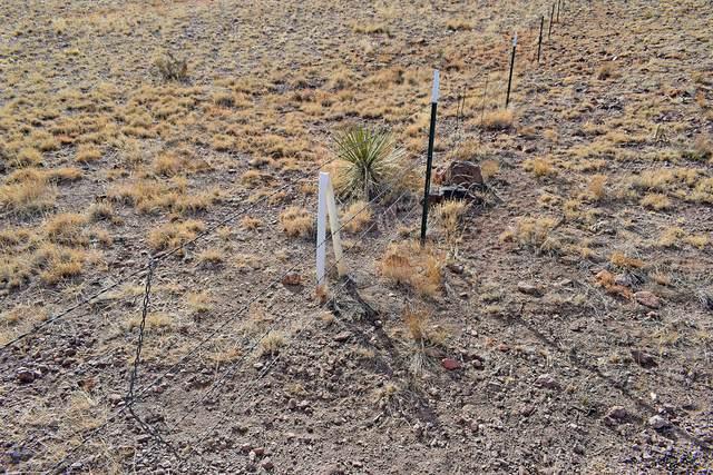 Lot 110 Antelope Hills Ranch, San Antonio, NM 87832 (MLS #985649) :: The Buchman Group