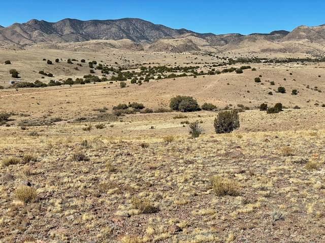 12 Highland Springs Ranch, San Antonio, NM 87832 (MLS #985685) :: The Buchman Group