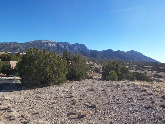 72 Vista De Las Sandias, Placitas, NM 87043 (MLS #985756) :: Keller Williams Realty