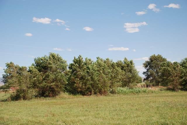 Camino Ulibarri, Veguita, NM 87062 (MLS #985782) :: The Buchman Group