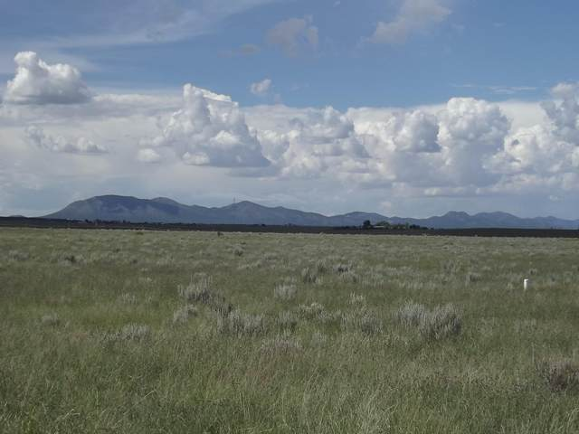 Sunrise Drive, Moriarty, NM 87035 (MLS #985790) :: Campbell & Campbell Real Estate Services
