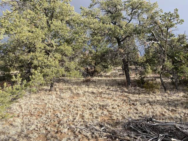 495 Pine Meadows Unit 4, Ramah, NM 87321 (MLS #985826) :: Campbell & Campbell Real Estate Services