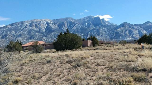 Ocate Court, Placitas, NM 87043 (MLS #985893) :: The Buchman Group