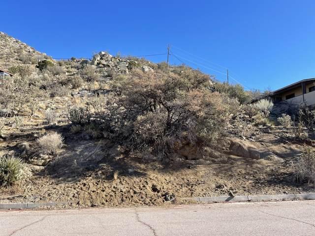 4416 Skyline Court NE, Albuquerque, NM 87111 (MLS #985953) :: The Buchman Group