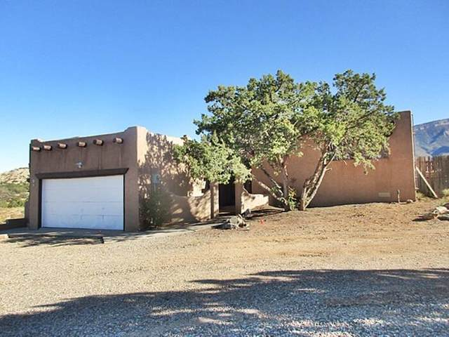 18 Homesteads Road, Placitas, NM 87043 (MLS #986011) :: The Buchman Group
