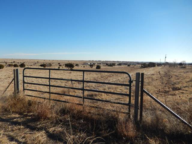 State Road 344, Edgewood, NM 87015 (MLS #986023) :: Sandi Pressley Team
