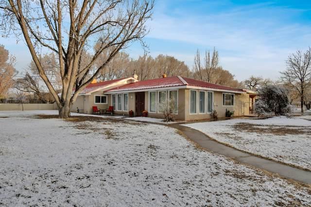 516 Roehl Road NW, Los Ranchos, NM 87107 (MLS #986053) :: The Buchman Group