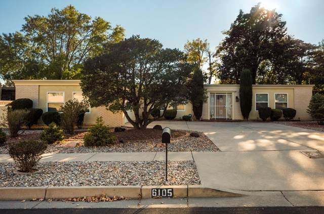 6105 Quemado Drive NE, Albuquerque, NM 87109 (MLS #986058) :: The Buchman Group
