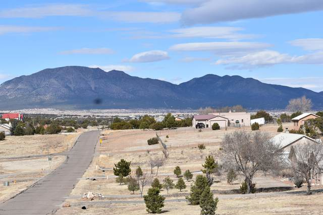 16 Cielo Estrellado Drive, Edgewood, NM 87015 (MLS #986107) :: Sandi Pressley Team