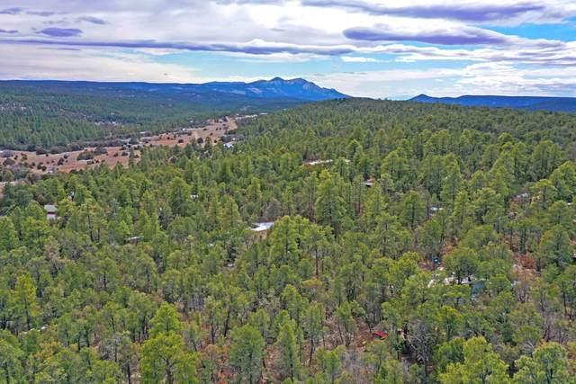 54 Nightingale Lane, Tijeras, NM 87059 (MLS #986198) :: Berkshire Hathaway HomeServices Santa Fe Real Estate