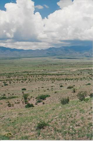 Willow Springs Ranch Lot: 35, San Antonio, NM 87832 (MLS #986203) :: The Buchman Group