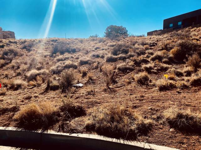 2417 Desert Marigold Road NE, Rio Rancho, NM 87144 (MLS #986205) :: The Buchman Group