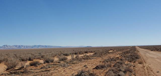 Tierra Grande Lot 5-7 Pito Ct, Veguita, NM 87062 (MLS #986223) :: The Buchman Group