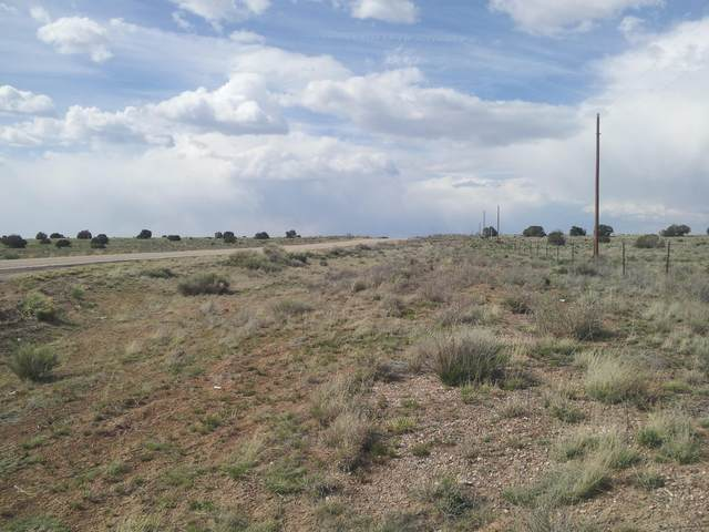 0 Pine Hill Road, Fence Lake, NM 87315 (MLS #986293) :: The Buchman Group