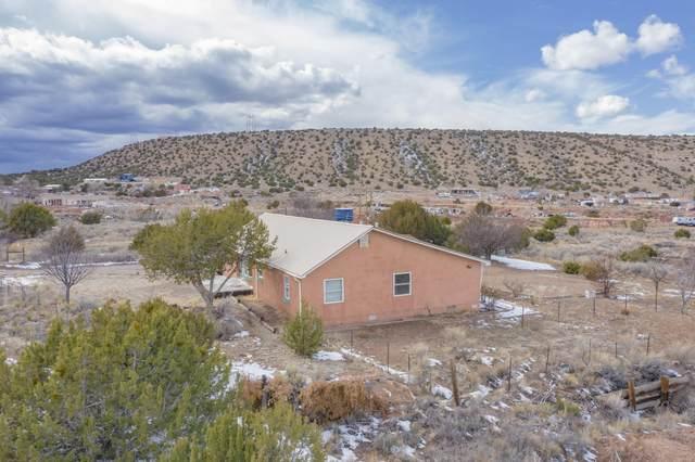 42 Camino De Los Pueblitos, Placitas, NM 87043 (MLS #986294) :: The Buchman Group