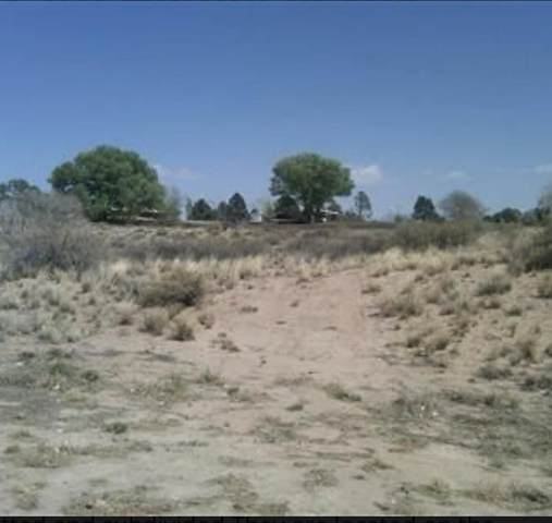 Vl Hwy 304 And Western, Belen, NM 87002 (MLS #986485) :: Sandi Pressley Team
