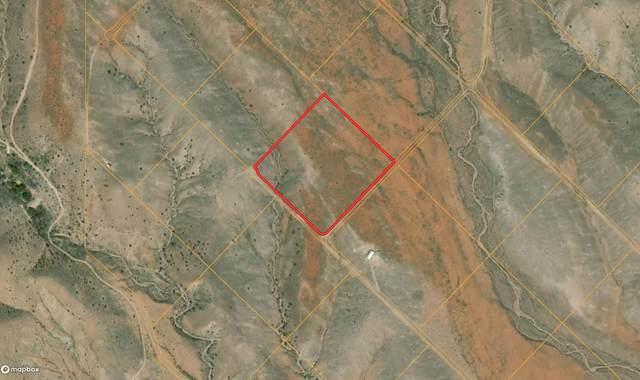 Lot 124 Golden Ridge Road, San Antonio, NM 87832 (MLS #986495) :: Berkshire Hathaway HomeServices Santa Fe Real Estate
