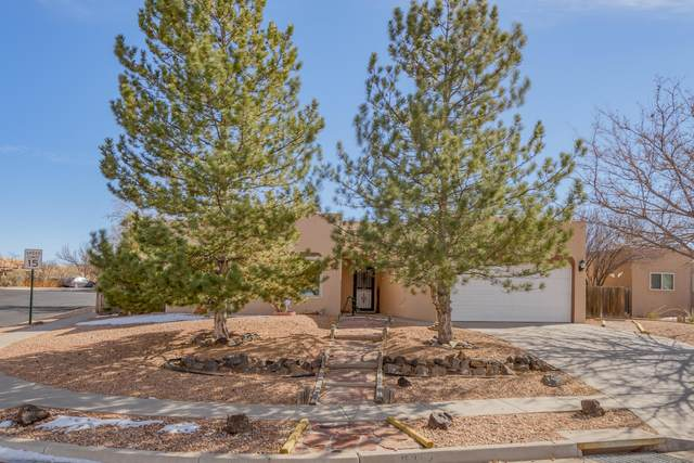 7522 Snow Blossom Road, Santa Fe, NM 87507 (MLS #986499) :: Sandi Pressley Team