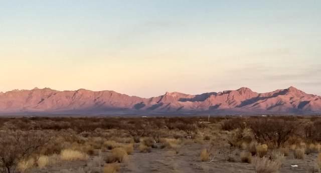 Deming Ranchettes Tract 1, Deming, NM 88030 (MLS #986517) :: Sandi Pressley Team