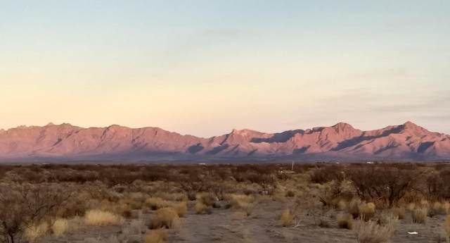 Deming Ranchettes Tract 4, Deming, NM 88030 (MLS #986521) :: Sandi Pressley Team