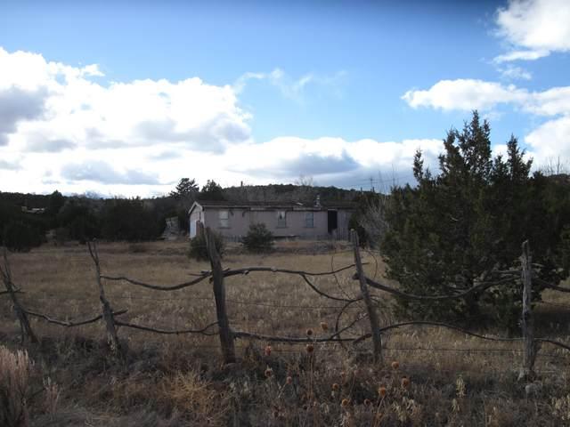 62 Windmill Road, Edgewood, NM 87015 (MLS #986590) :: Sandi Pressley Team