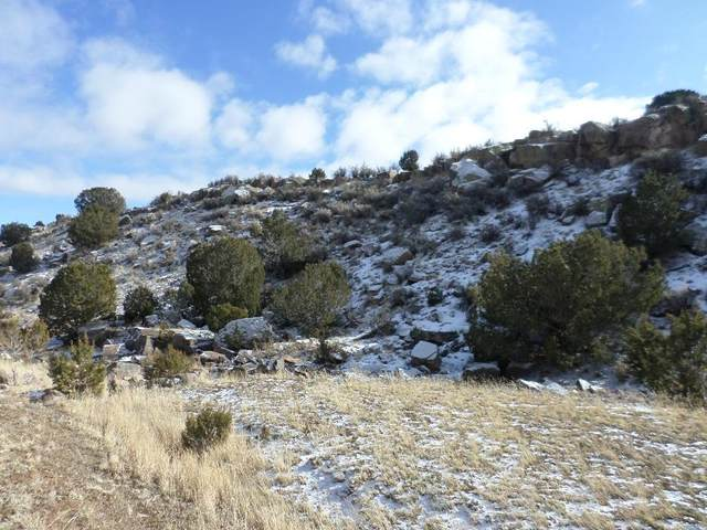 0 Lexco Road, Moriarty, NM 87035 (MLS #986641) :: The Buchman Group