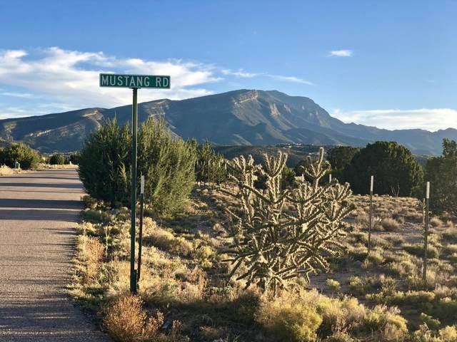 Lot 7 Mustang Road, Placitas, NM 87043 (MLS #986657) :: Sandi Pressley Team