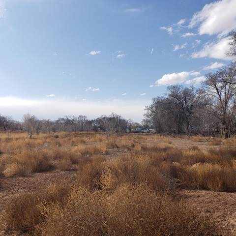 El Cerro Loop, Los Lunas, NM 87031 (MLS #986676) :: Sandi Pressley Team