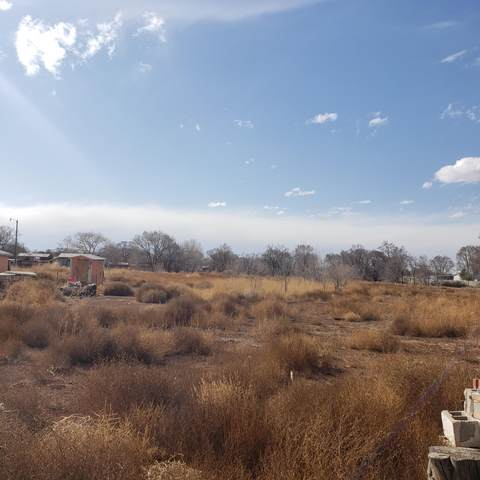 El Cerro Loop, Los Lunas, NM 87031 (MLS #986677) :: Sandi Pressley Team