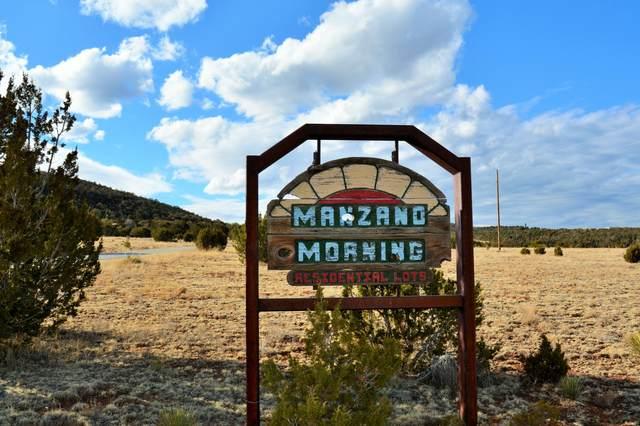 XX Twin Peaks Drive, Estancia, NM 87016 (MLS #986679) :: Sandi Pressley Team