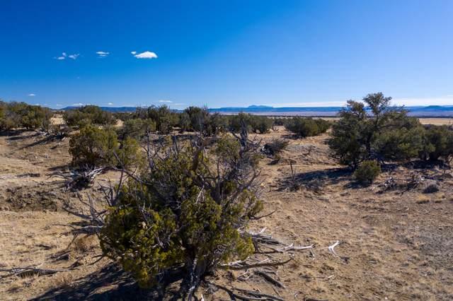 0 N Pueblo Way, Quemado, NM 87829 (MLS #986708) :: Keller Williams Realty